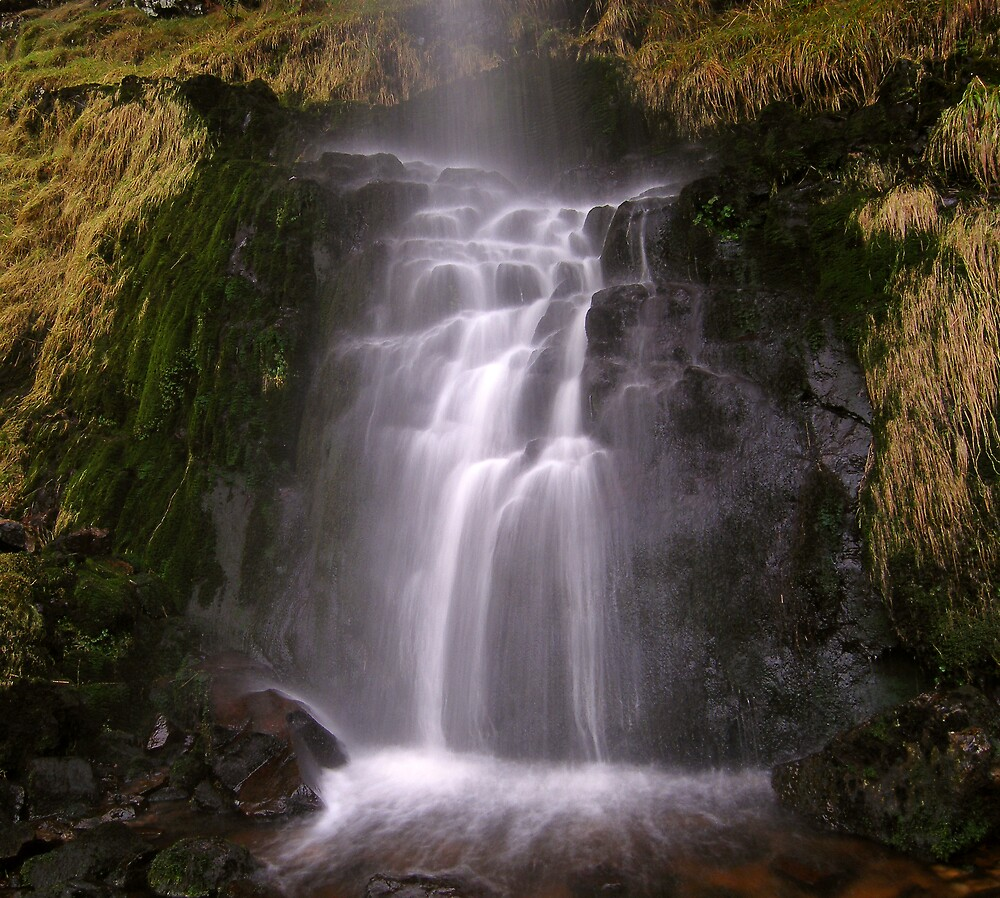 Craigie Linn by David James