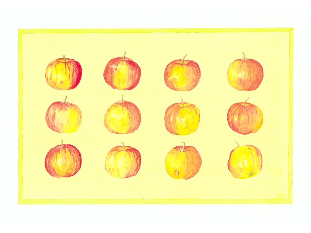 Apples by Jenny Opie