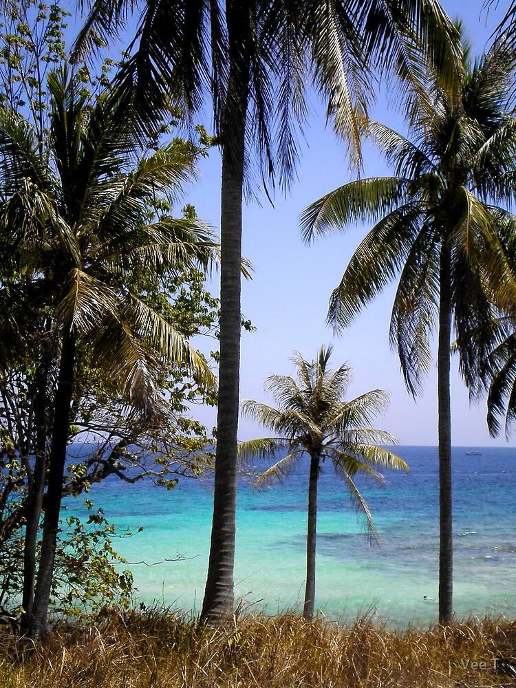 Raya Island by Vee T