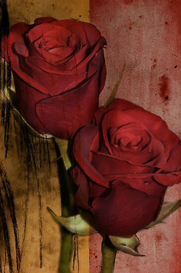 Double roses by Nicole W.