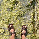 beach rock moss feet by Devan Foster