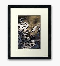 rocks 24 Framed Print