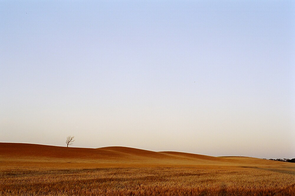 November Dawn, Vinegar Hills by mgimagery
