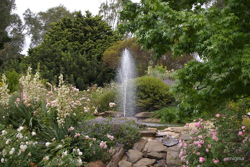 Barossa rose garden by enigma