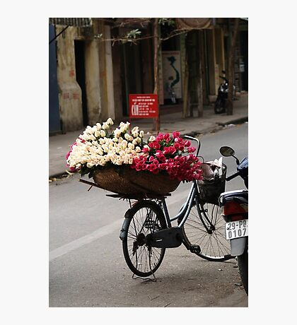 basket of roses : 1189 views Photographic Print