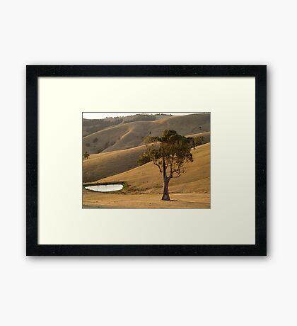 hot and dry Framed Print