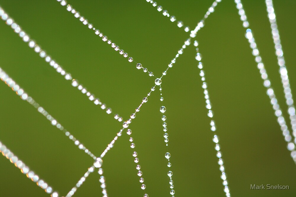 Web Droplets by Mark Snelson