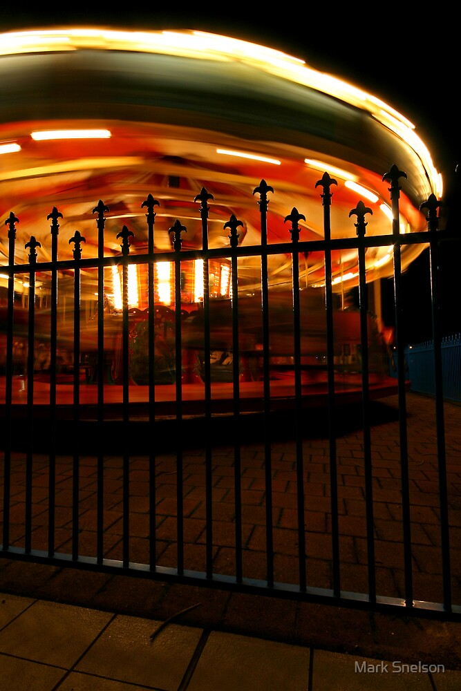 Spinning Carousel by Mark Snelson