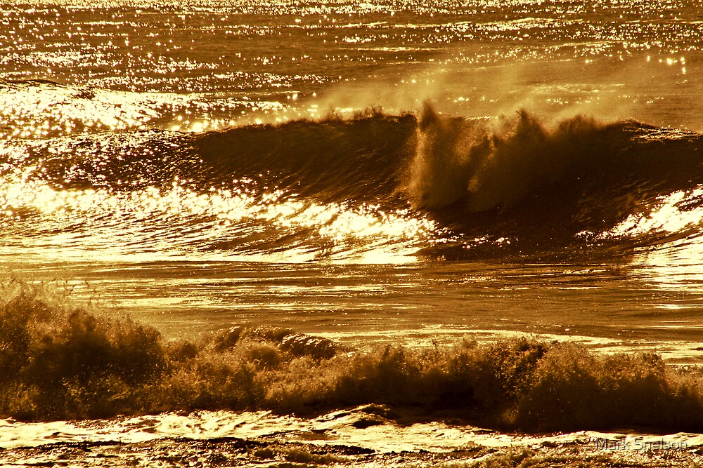 Golden Wave by Mark Snelson
