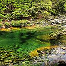 Cool Clear Water by Barbara  Brown