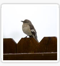 Sparrow on a Fence Sticker