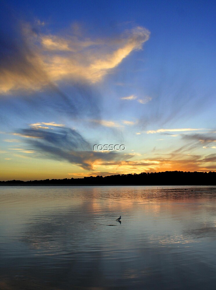 End Of Day by rossco