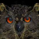 It looks like an owl - it's an owl ☺ by © Kira Bodensted