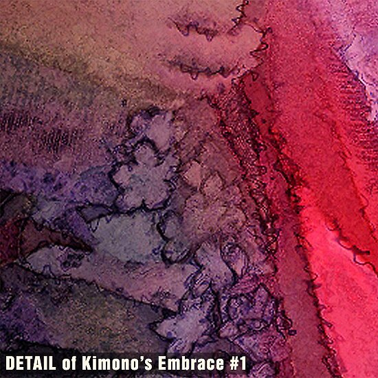 Kimono's Embrace #1 (DETAIL) by Michael Critchley