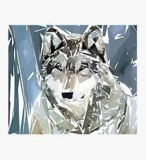 Loup Photographic Print