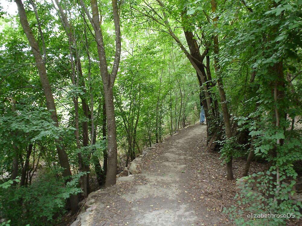 path to no-where by elizabethrose05