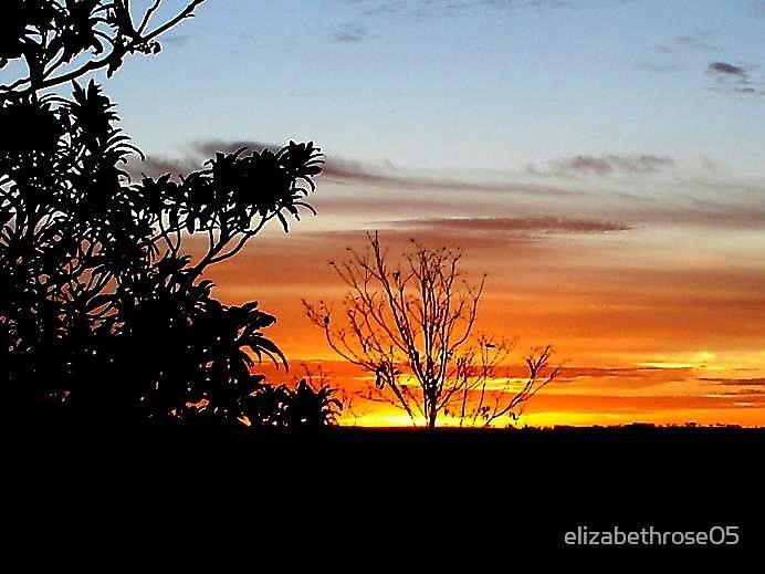 sunrise by elizabethrose05