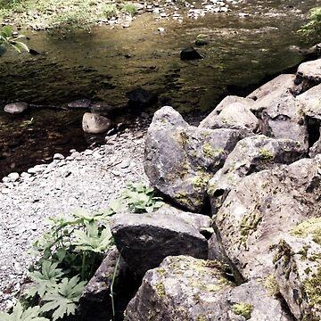 Creek by zhirobas