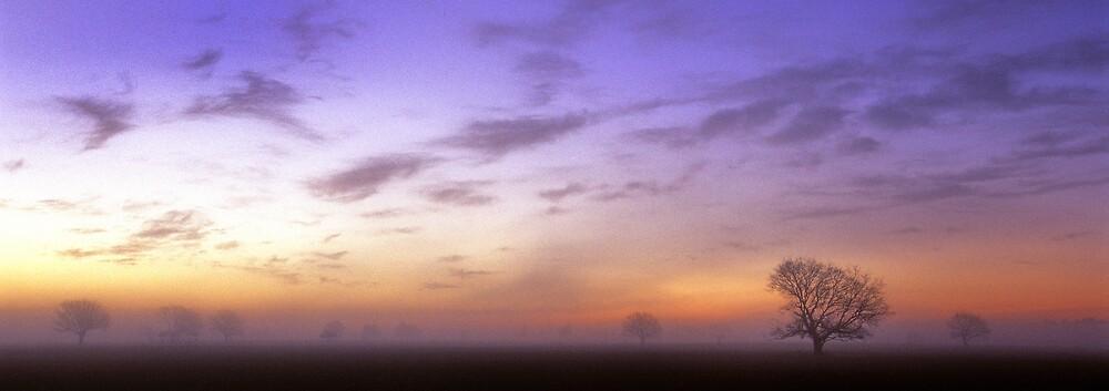 Dawn - Richmond by Alex Lau