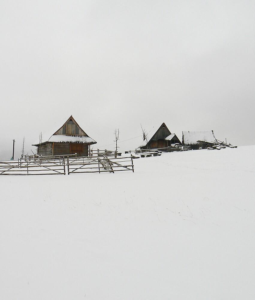 Winter by Ian Jones