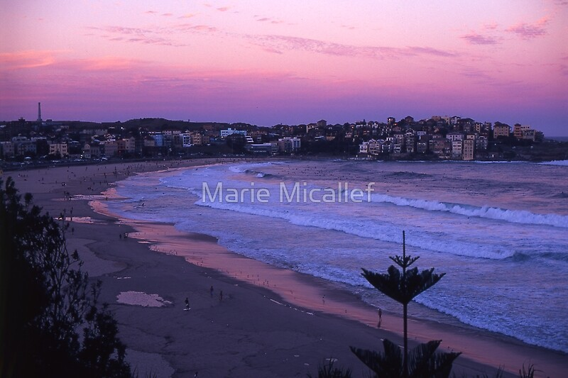 Bondi Sunset by Shutterbug