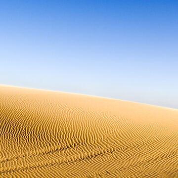 Stockton Beach Sand Dunes by Shutterbug