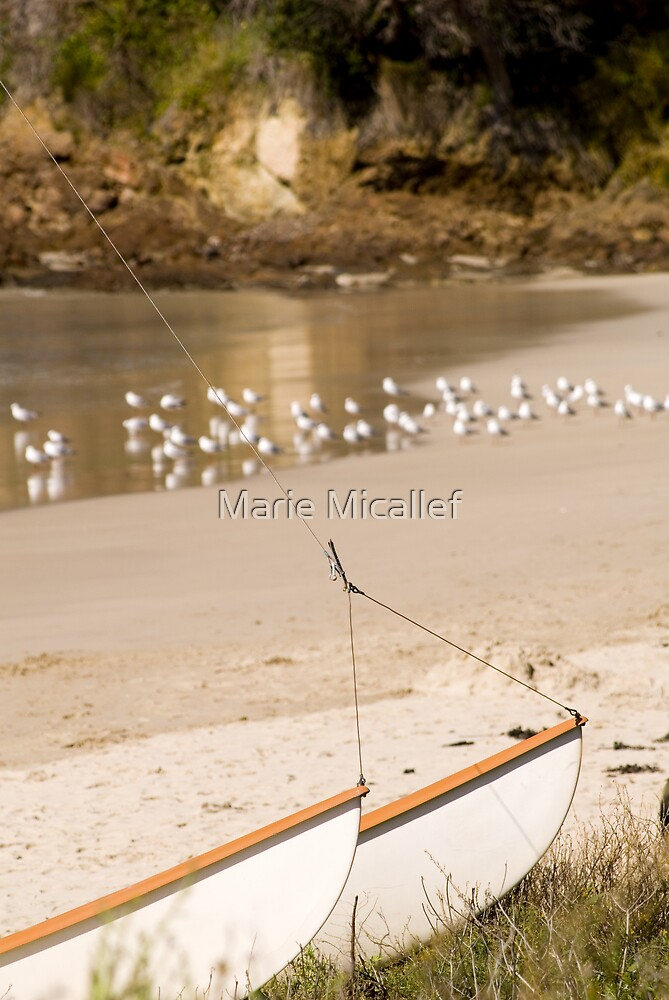 Boat and Seagulls on a Beach by Shutterbug