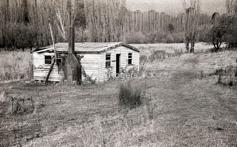 Abandoned House, Hops Fields, Tasmania by BRogers