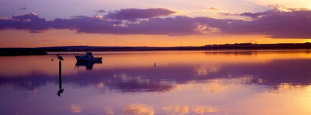 Glow - Swan Bay - Queenscliff by James Pierce