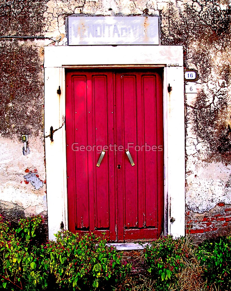tuscan door2: old wine house by Georgette Forbes