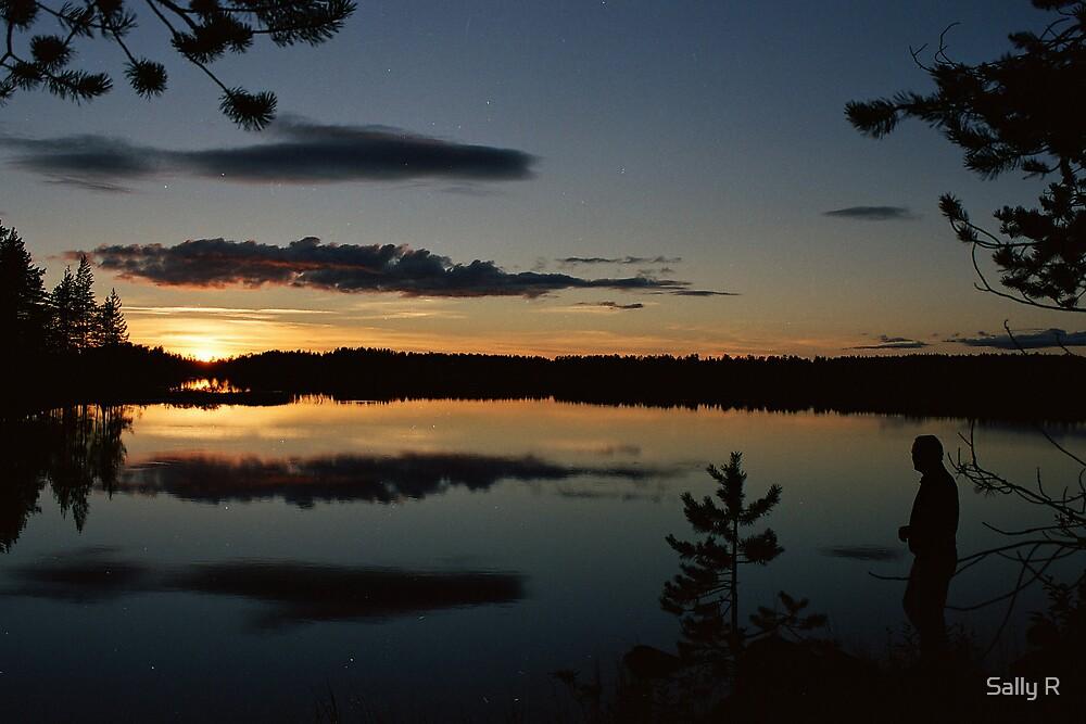 Midnight Sun by Sally R