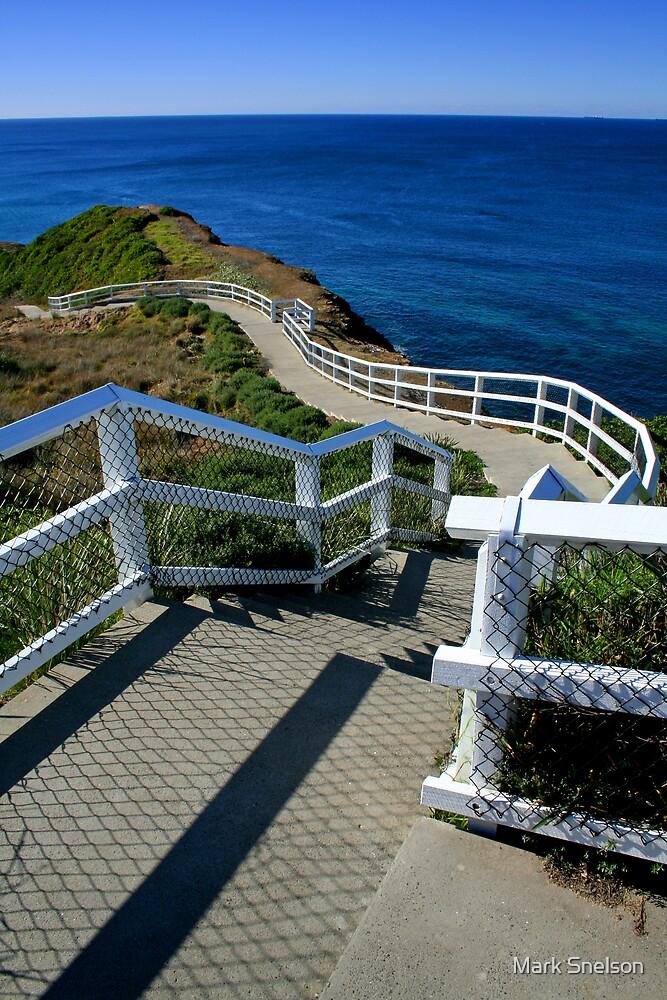 Coastal Path 2 by Mark Snelson