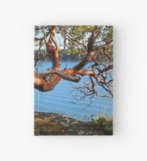 Summer and an Arbutus tree Hardcover Journal