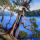 detail Southern Gulf Islands Afternoon by TerrillWelch
