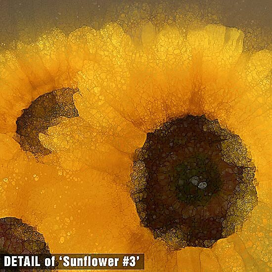 DETAIL of Sunflower #3 by Michael Critchley