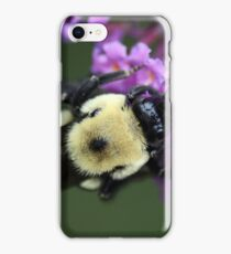 Bumble Bee on Flower iPhone Case/Skin