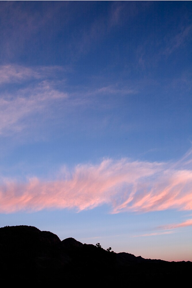 Pink and Blue #2 by Thomas Kress