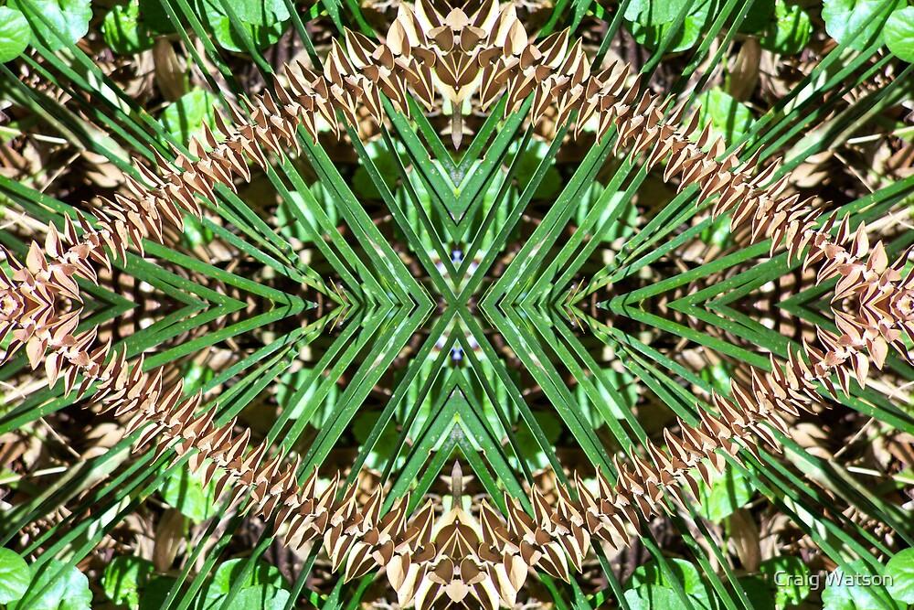 Botanic Kaleidoscope #1 by Craig Watson