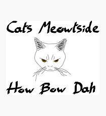 Cats Meowtside How Bow Dah Photographic Print