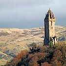National Wallace Monument by Stuart  Fellowes