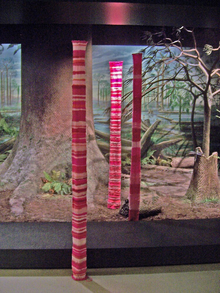 Pole 1, 2, 3 (2006) by Troy-Anthony Baylis