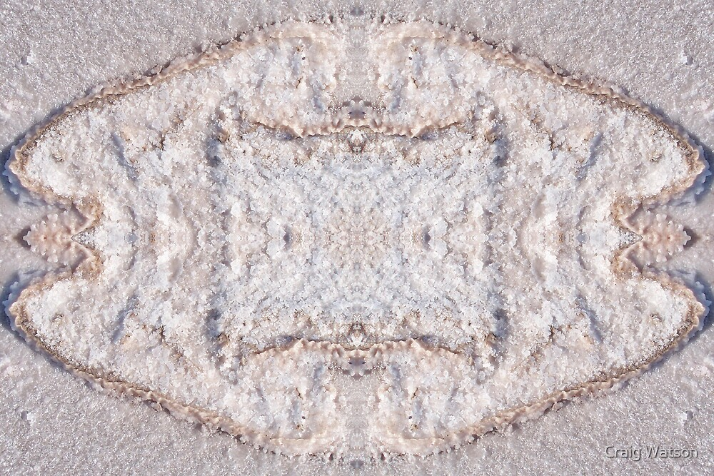Salt Encrustation Kaleidoscope #1 by Craig Watson