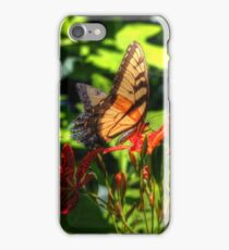 HDR Monarch Butterfly IPhone Case in Blue Springs Arkansas iPhone Case/Skin