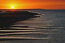 Hervey Bay by Darren Stones