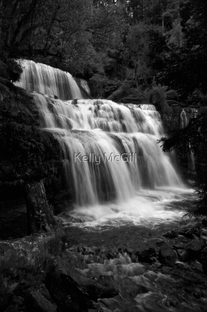 Liffey Falls  by Kelly McGill