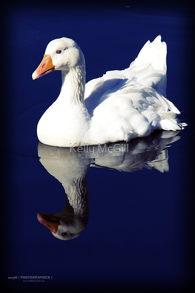 Gooseflection by Kelly McGill