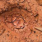 Eye in the mud by Thomas Kress
