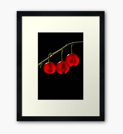 Red Currant Berries Framed Print