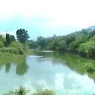Magalies River serenity by Hedgie's Nature & Gardening Journal