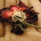 Rose! by MallsD